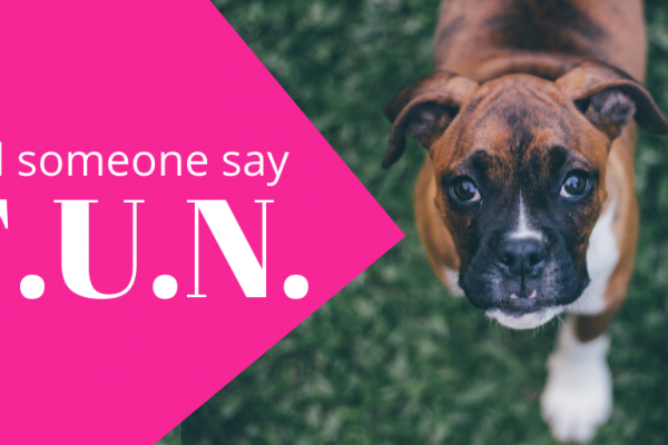 More interaction: Did someone say fun with your content!